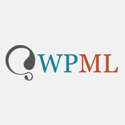 logosquare wpml mini - logosquare-wpml-mini